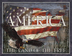 Tin Signs America Land of Free