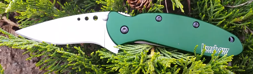 Kershaw Scallion Review